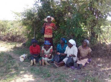 Irrigation projects improves rural farmers livelihoods