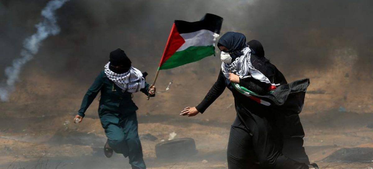Zim commemorates International Day of Solidarity with the Palestinian People