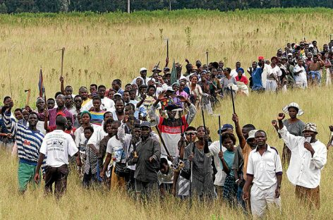 Land audit an opportunity to build confidence in Zim's agric sector